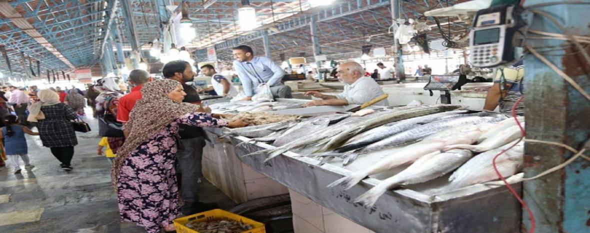 ارائه غرفه رایگان به دستفروشان ماهی و میگو در بندرعباس