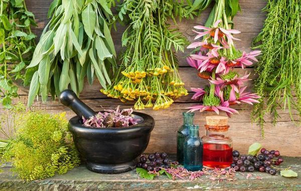 5 گیاه دارویی شگفت انگیز که هورمون های بدن شما را متعادل می نمایند